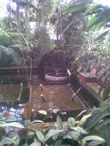 2008-03-15-botanicka-zahrada-01-velke