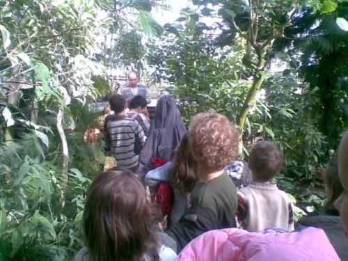 Návšteva botanickej záhrady, marec 2008