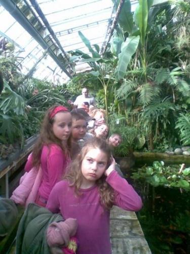 2008-03-15-botanicka-zahrada-03-velke