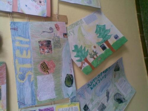 2008-04-15-zelena-skola-17-velke