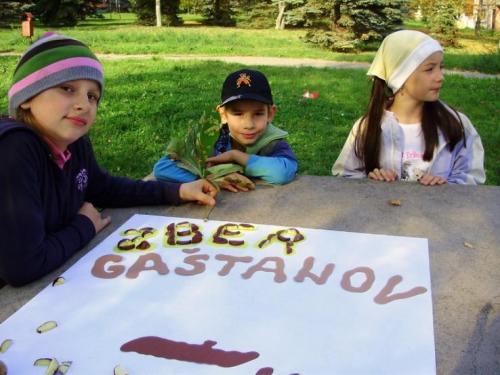 2008-10-zber-gastanov-01-velke
