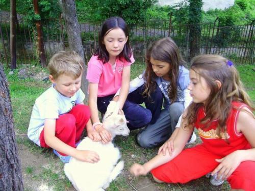 2009-06-15-skola-v-prirode-13-velke