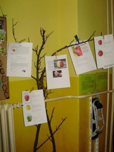 2009-10-15-jablkovy-tyzden-15-velke