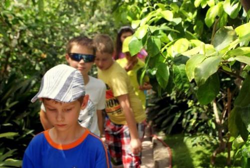 Botanická záhrada - Motýle - ŠKD, 5.6.2015