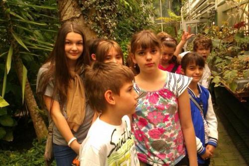 Motýle v botanickej záhrade, 23.5.2012
