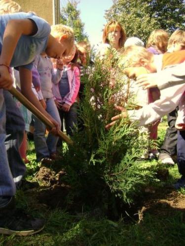 celosvetovy-den-sadenia-stromcekov-04-velke