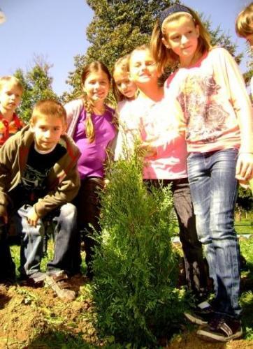 celosvetovy-den-sadenia-stromcekov-05-velke