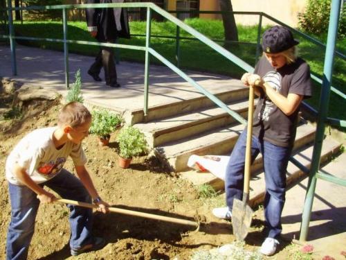 celosvetovy-den-sadenia-stromcekov-11-velke