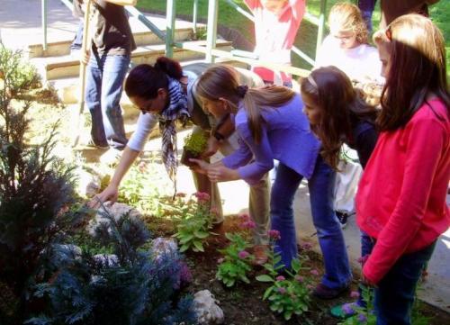 celosvetovy-den-sadenia-stromcekov-13-velke