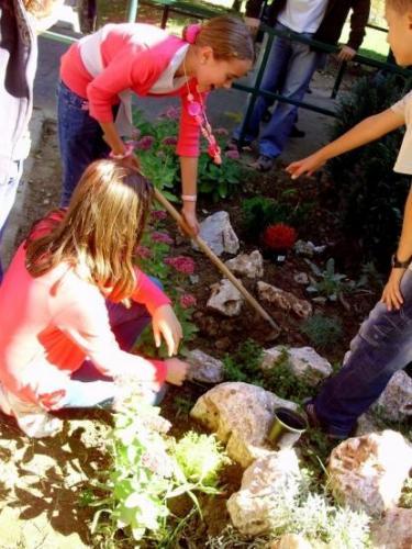 celosvetovy-den-sadenia-stromcekov-14-velke