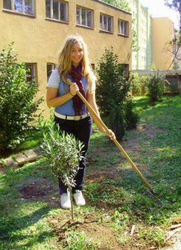 celosvetovy-den-sadenia-stromcekov-17-velke