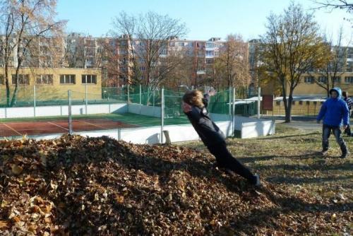 Jesenná brigáda, 11.11.2011
